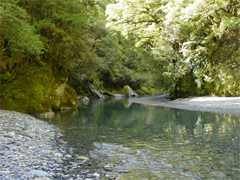 Pin fly fishing new hulls from hells bay on pinterest for New zealand fly fishing