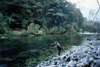 New Zealand premier Fly fishing guide Ian Cole. Flyfishing ...